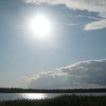 Озеро в Луге